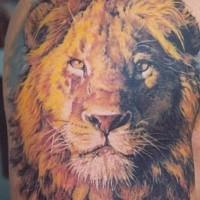 tatuaggio simpatico la famiglia dei leoni. Black Bedroom Furniture Sets. Home Design Ideas